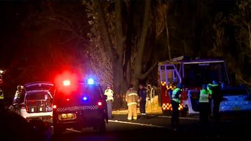 Man dies after crashing car into tree while trying evade police