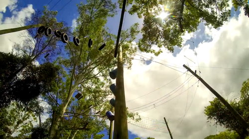 It's believed he was injured when he became tangled in the ropes. Picture: Supplied