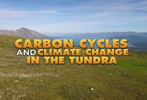 Carbon Cycles and Climate Change in the Tundra