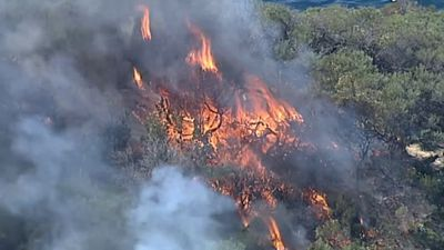 Fires sweep close to Sydney mansions