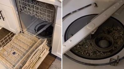 Just two household items got this dishwasher sparkling like new