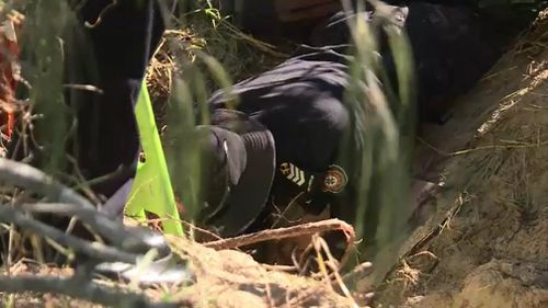 A police officer reaches down into the hole. Picture: 9NEWS