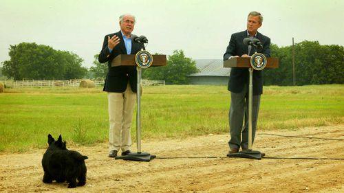 Presidential pooch Barney gatecrashes a press conference with John Howard and George W Bush in 2003.