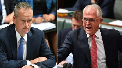 Turnbull unleashes personal spray on Shorten