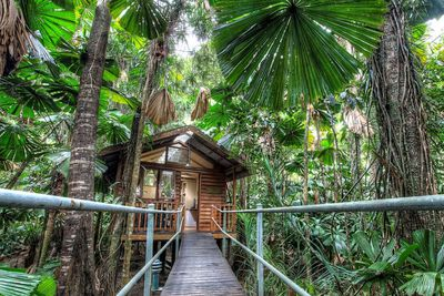 <strong>Daintree Eco Lodge & Spa Hotel, QLD</strong>