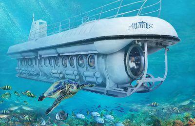 Seabourn Venture: Submarine