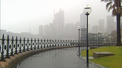 Sydney Harbour remains wet after overnight drenching