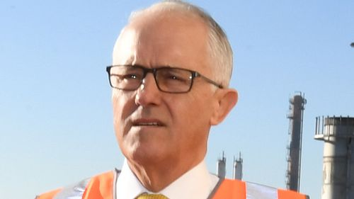 """Malcolm Turnbull says the news is an """"excellent outcome for Australian families"""". (AAP)"""