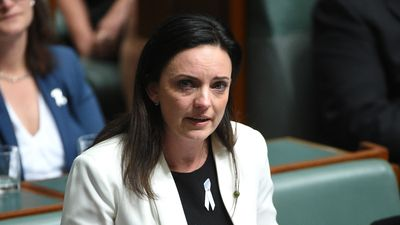 Husar 'horrified' by bullying allegations as Shorten stays silent