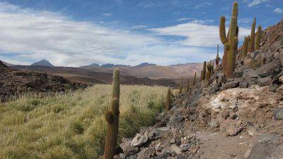 South America's best kept secret