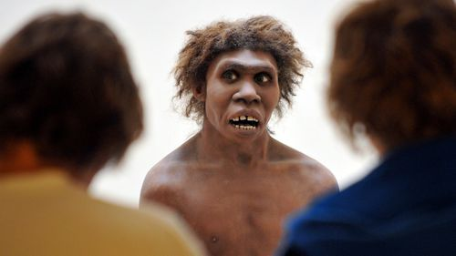 All humans have some Neanderthal DNA, according to new research.