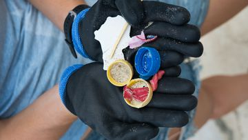 The team found plastic on every island they went to in Far North Queensland.