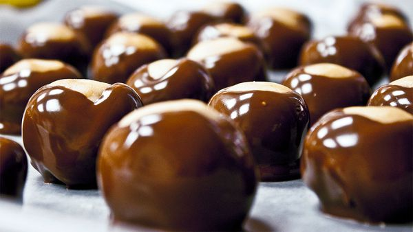 Profiteroles lined up