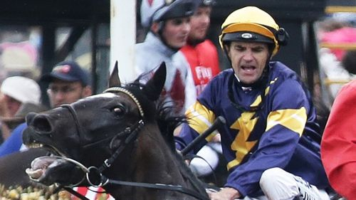 Araldo gets spooked at the Melbourne Cup.