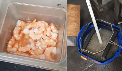 Prawns in an open container and a mop left in rancid water.