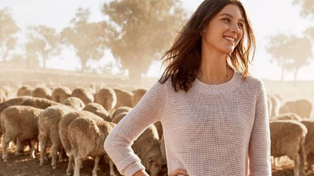 PETA calls wool the new fur