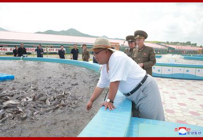 "North Korea's Ministry of Foreign Affairs also claimed ""he repeatedly asked the officials and employees of the factory to mass-produce diverse tasty and highly nutritious pickled fish goods in the spirit of devotedly serving the people and thus make the Party's noble policies of loving the people pay off in reality and make people actually benefit from them."""