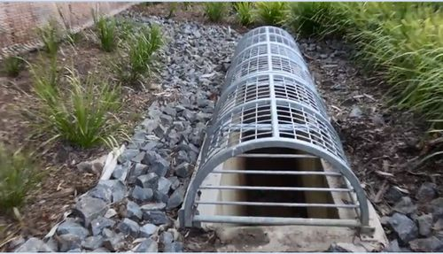 Schoolgirls rescued from Gold Coast stormwater drain after crawling through pipe