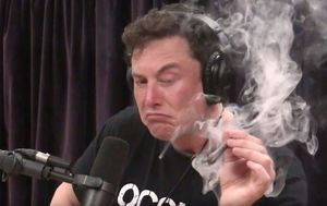 Elon Musk tells staff smoking weed with Joe Rogan was 'not wise'