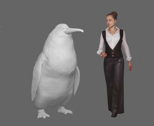 A new species of giant penguin  about 1.6 metres tall  has been identified from fossils found in Waipara, North Canterbury.