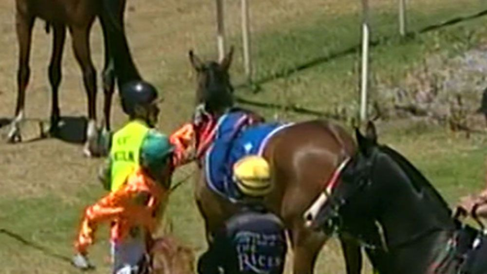 Jockey Dylan Caboche banned for punching horse