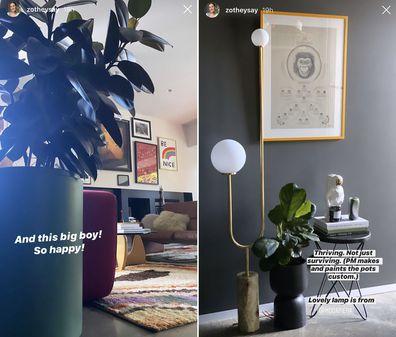 Zoë Foster Blake's plants