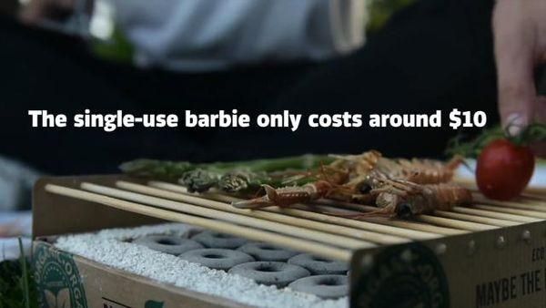 This eco-friendly, portable grill only costs $10