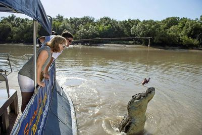 <strong>Come face to face with jumping crocodiles</strong>