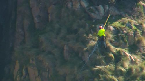 It's believed the two men were contracted to a nature park. (9NEWS)