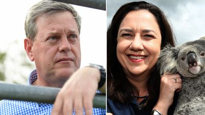 Poll predicts win for Palaszczuk and Queensland Labor