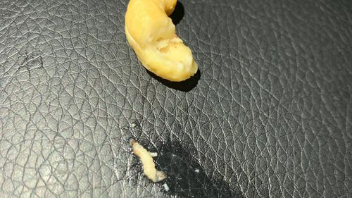 A Sydney Woolworths customer alleges to have found maggots inside a self-serve bag of mixed fruit and nuts.