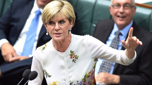 Julie Bishop announces $30m to fight tuberculosis and malaria