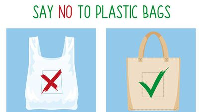 Woolies plastic bag bans