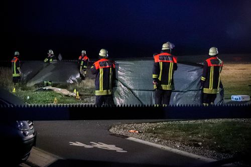 Four people on board the plane and an eyewitness were suffering from shock after the crash.