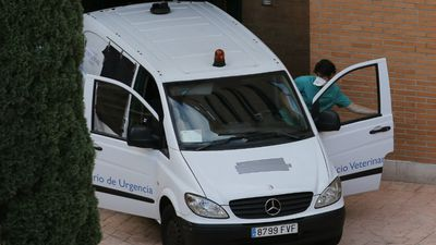 The van believed to have collected Excalibur arrives at Teresa Romero's apartment block. (AAP)