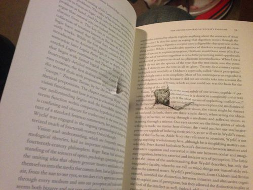 The bullet went straight through this book while it was in Jason Dreyfus' bag. (Facebook)
