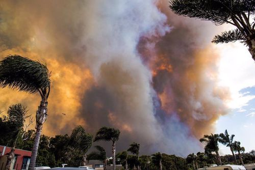 The fire cut off the residents of Tathra after it crossed the Bega River. (Chris Bowles/Facebook)