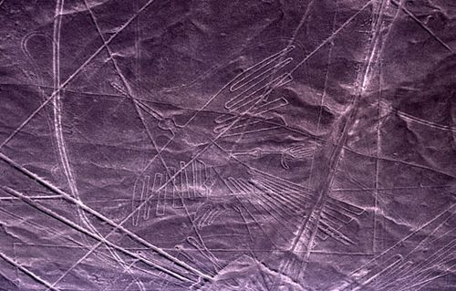 The Nazca Lines in Peru includes the etching of this bird-like creature in the desert.