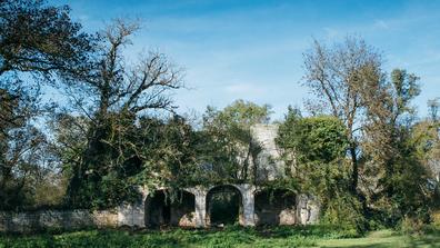 Dartagnans castle, Cognac