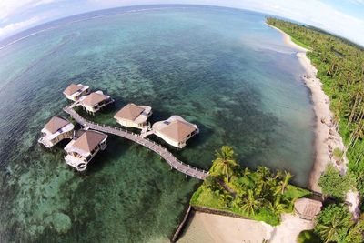 <strong>Gabrielle and Nasser: Coconuts Beach Club Resort & Spa, Samoa</strong>