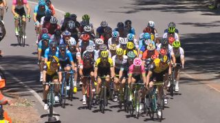 Stage 2: Unley to Stirling Highlights