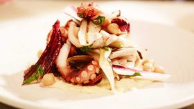 Woodfired grilled baby octopus salad