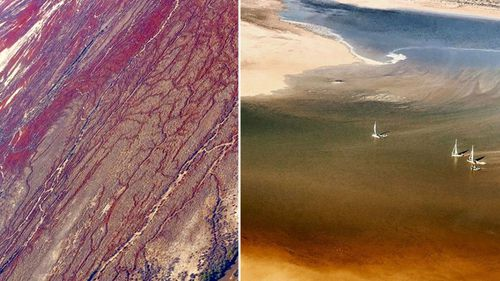 Trevor Wright, who operates an air service and the local pub, shared images from the transformed Lake Eyre this week.
