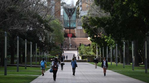 University should be free, say the Greens.