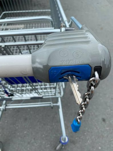 Woman's ALDI coin trolley hack goes viral.