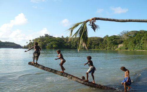 Tanna Island, an island in Vanuatu. (AAP)