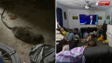 Children sleeping among rats after builder sacked mid-reno