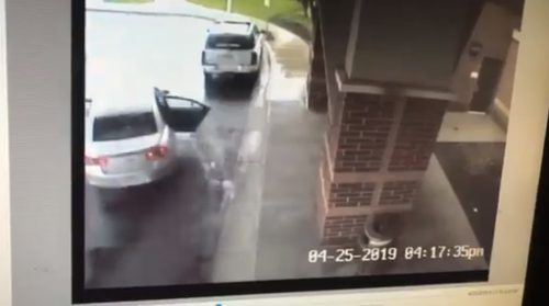 CCTV footage captured the heart-stopping moment Chance rescued his sister Skylar from their grandmother's stolen vehicle.