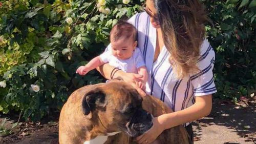 The family's three-month-old has been seriously injured and their pet dog died.
