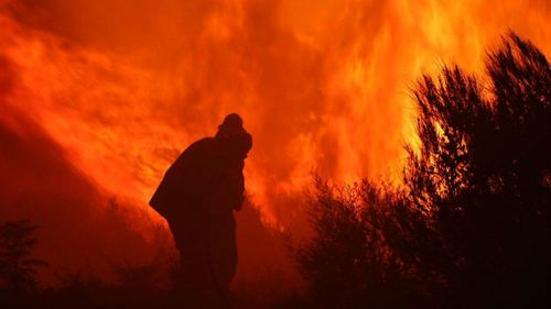 Firefighters tackle the blaze in the Blue Mountains.